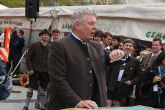 Maibaum am Viktualienmarkt 2017