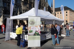 Infostand Marienplatz, Munich Unplugged bei den Innstadtwirten in München 2019