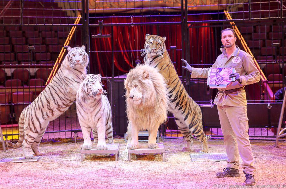 Tickets Für Die Februar Premiere Im Circus Krone München Gewinnen